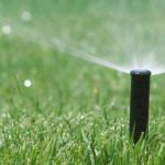 irrigation scheme